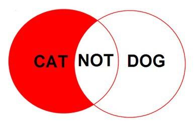 catnotdog